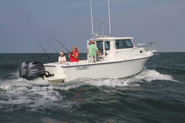 A 2520 XLD Sport Cabin - Ice Blue is a Power and could be classed as a Saltwater Fishing,  or, just an overall Great Boat!